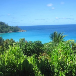 THE SEYCHELLES –  SHORT BREAK