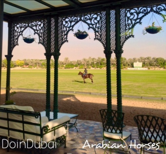 Victorian Balcony over Polo Fields in Desert Palm Dubai