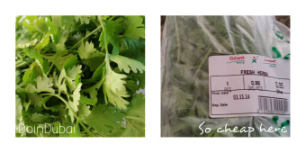 Fresh herbs like coriander are so cheap in Dubai