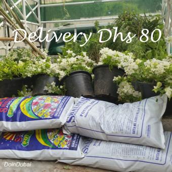 Dubai Gardening Delivery