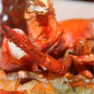 How much is a grilled lobster at BurgerLobster Dubai