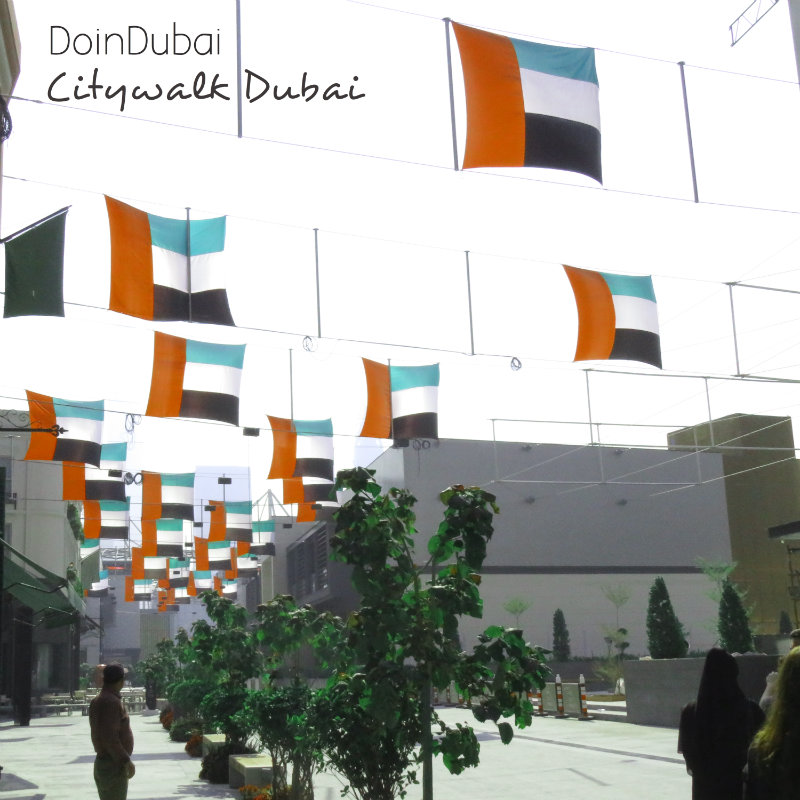 Citywalk Dubai DoinDubai Flag Street