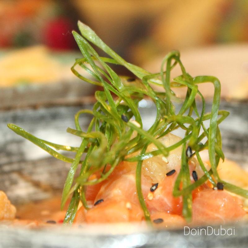 MAYTA DIFC DoinDubai Salmon Ceviche 800