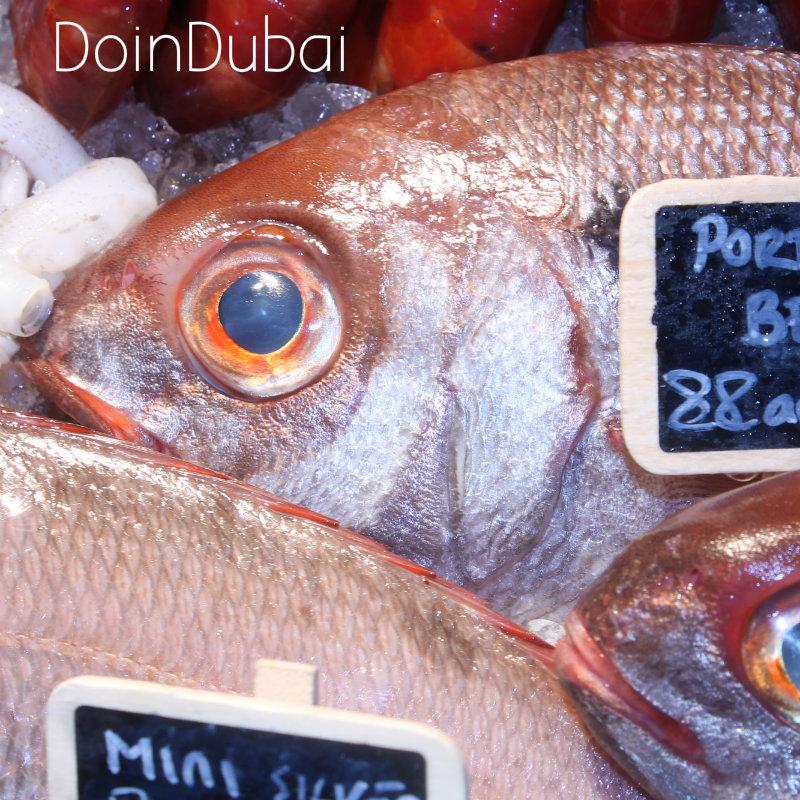 Novikov Fresh fish