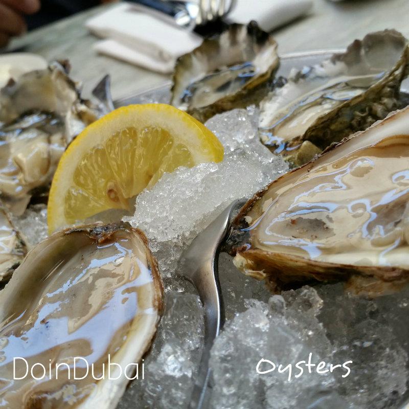 Oysters Santa Monica