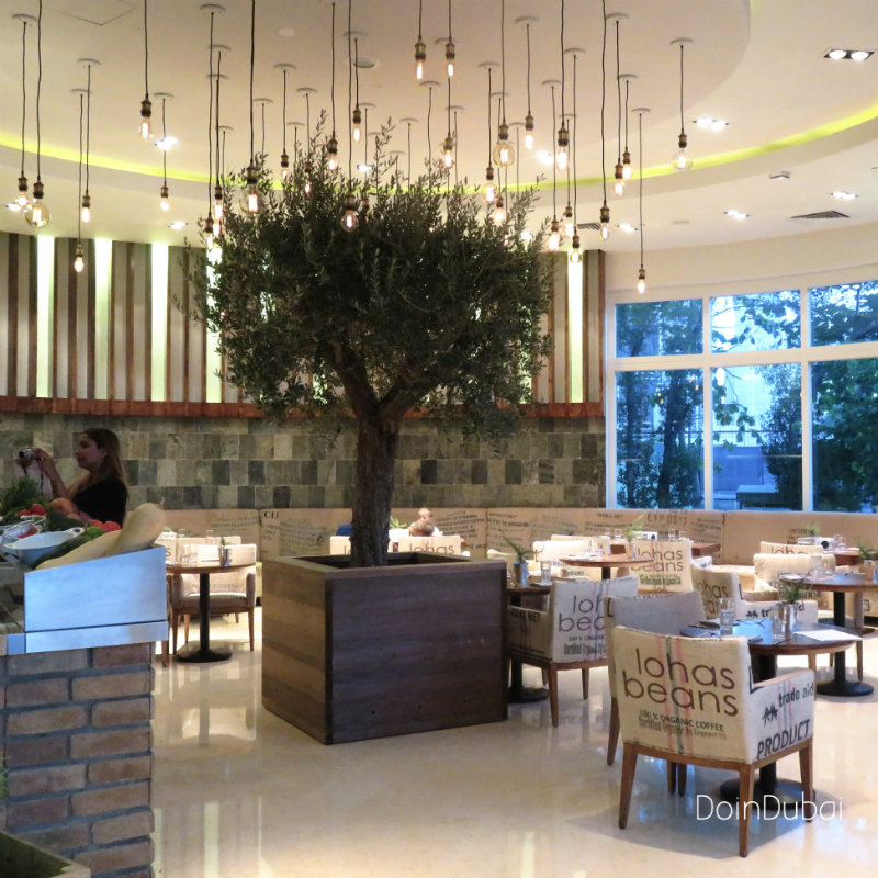 Gourmet By KCal olive tree DoinDubai