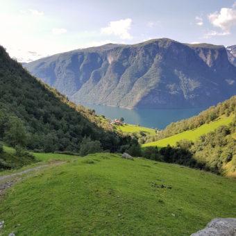 Image of Exploring Norway DoinDubai Aurland 292 Fjord Views on trek